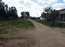 #الكيخيا للعقارات - بنغازي مزرعه في القوارشه 6500 متر بالقرب من سوق السعي