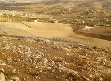 ارض للبيع في صروت قريبه من شفابدران بجانب مزارع وشاليهات