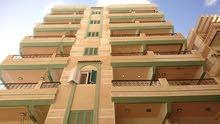امتلك شقة هاى لوكس بشاطئ النخيل (6 اكتوبر) خطوات من الشاطئ / خطوات من نادى وحمام سباحة (دانا بلازا)