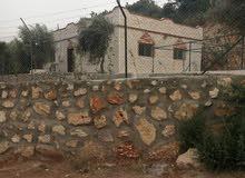 مزرعه صغيره مع بيت للبيع جرش. ساكب