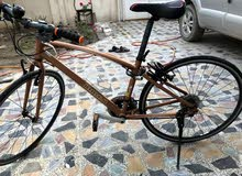 دراجة 700 Momentum نظيفة للبيع