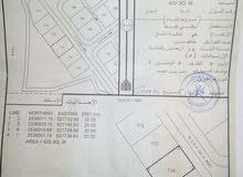 ارض لبيع ف ولايه المضيبي بلد الروضة «الواريه» مساحه الار ض 600متر