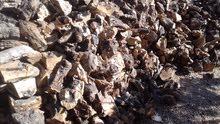 حطب فاير بليس زيتون ولوزيات(توصيل داخل عمان فقط )