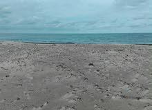 ثلثة.هكتاراة.للبيع.بي.شاطئ.زاوية.المقايز.الهوارية