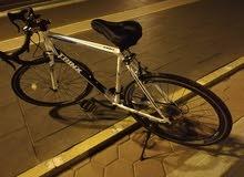 Trinx tempo 1.4 road cycle