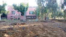 مزرعة ومنزل للبيع مساحة الارض 2 دونم مساحة المنزل 100 متر