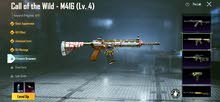 M416 CALL OF WILD LEVEL 4 AND VSS LEVEL 1