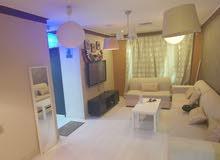 شقة خلو غرفة وصالة كبيرة + بلكونة للإيجار بميدان حولي