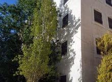 شقة مفروشة للايجار ابو نصير حي المحبة