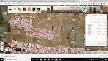 للبيع ارض في منطقه الطنيب التنظيم سكني