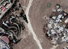 قطعة أرض للبيع خلف جامعة عمان الاهلية على 3 شوارع 92الف