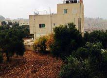 منزل مستقل للإيجار - لواء بني كنانه - قرية المزيريب