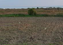 للبيع ارض على الطريق الرئيسي  تبعد 150  م على البحر في قليبية