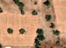 قطعة أرض للبيع او الاستثمار