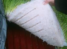 غرف استنبات الشعير جاهزة للزراعة وباعلى المواصفات وقدرات انتاج مختلفة