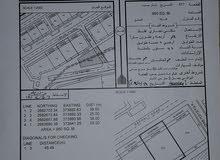 فرصه للبيع ارض سكني تجاري في البريمي / حماسة