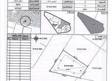 قطعتين أرض متجاورتين سكنية للبيع بمصفوت بعجمان بسعر مخفض