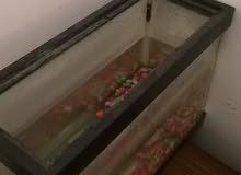 حوض سمك للبيع هدا راقمي 0926067717