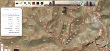 أرض للبيع في مادبا ذيبان مساحتها 11دونم و40 متر مربع