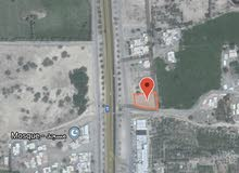 للبيع ارض سكني تجاري في السويق خضرا البورشيد اول خط من الشارع العام
