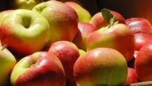 تفاح أوكراني
