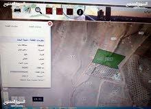 أرض زراعي للبيع ذيبان-مليح 4000م