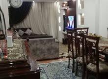 روعة البيطاش استمتع بالجمال شقة بالعفش بشارع عجمى ابو ديب