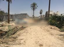 اراضي للبيع في ابو الخصيب /قطعة ركن + اثنين بجوارها (كهرباء وماء واصل) من المالك