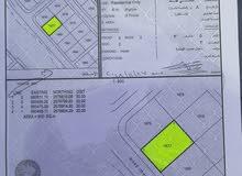 فرص رخيصه ارض في مدينة العامرات مخطط الحاجر 2