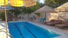 منزل مزرعة مع بركة للايجار - الغور - البحر الميت