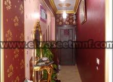 apartment in Monufia for sale