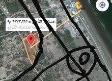 ارض سكنيه ع الخط الساحلي صحار  العوينات 5259م2