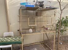 قفص كلير ينفع للطيور و الأرانب