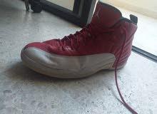 air Jordan 12