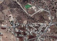 ارض للبيع في منطقه البيادر ابو السوس الدبه