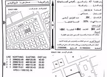 ارض صناعية 1000م للبيع- فلج العوهي