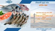 بيع الأسماك طازج