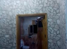 اسطا طلاء جدران وديكورات ورق حائط