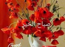 مدرس لغة عربية تأسيس الابتدائي والمتوسط والثانوي جميع مناطق الكويت