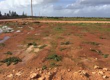 قطعة ارض في بوهادي 1000م