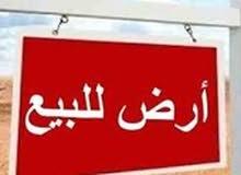 أرض تجارية تملك حر لكافة الجنسيات بحي الياسمين في عجمان ، من المطور مباشرةً شامل الرسوم