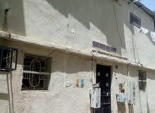 بيت شعبي للبيع اوالايجار - حي الشهداء