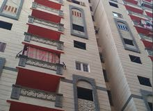 apartment is up for sale Sidi Beshr