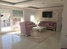 apartment for rent in Sharjah Muelih