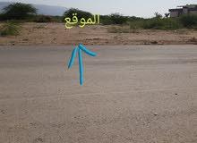 ارض للبيع في الغور السويمة البحر الميت
