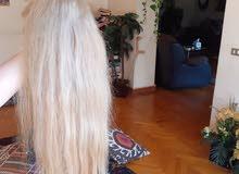 باروكة شعر طبيعي هندى للبيع