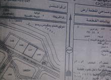 للبيع أرض سكنية 750 متر- في ولاية عبري العراقي مربع د