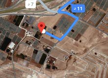 للبيع ارض 601 م في الذهيبه الغربيه الجواد العربي