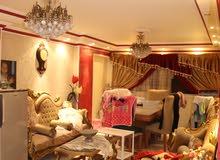 شقة فصيل شارع محمد قطب
