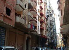 مدينة مبارك